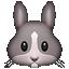 :rabbit: